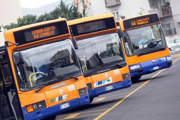 autobus-amat